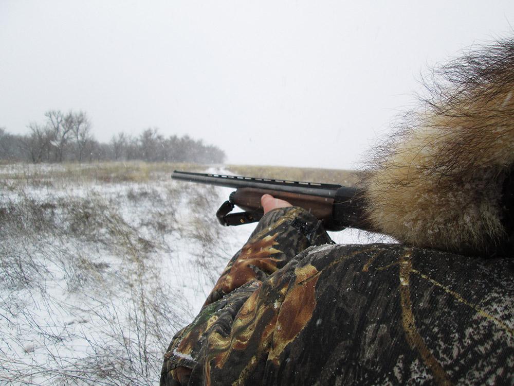 Стрельба по куропаткам