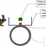 Как целиться в зайца