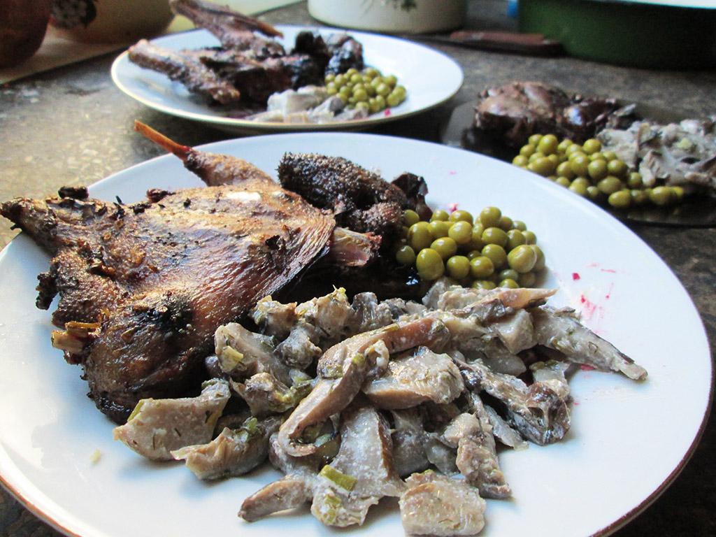 Рецепты блюд из дикой утки в духовке